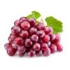 Купить :  Холикан (Ресвератрол)  - растительный статин   4635 руб
